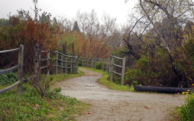 Horse path at Canyonside Stables in Rancho Penasquitos