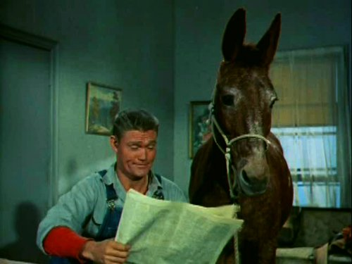Chuck Connors and Lulubelle.