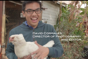 David Corrales cautiously befriends a chick in in the city.