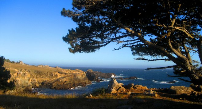 Postcard-worthy shot in Salt Point State Park, ninety miles north of SF.