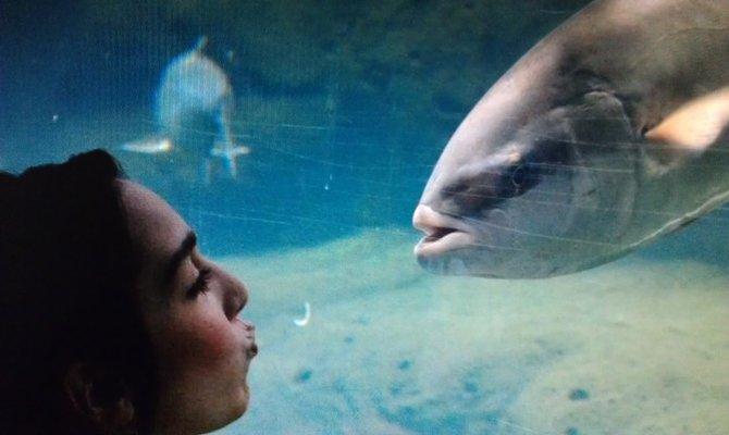 Give me a kiss @ seaworld san Diego