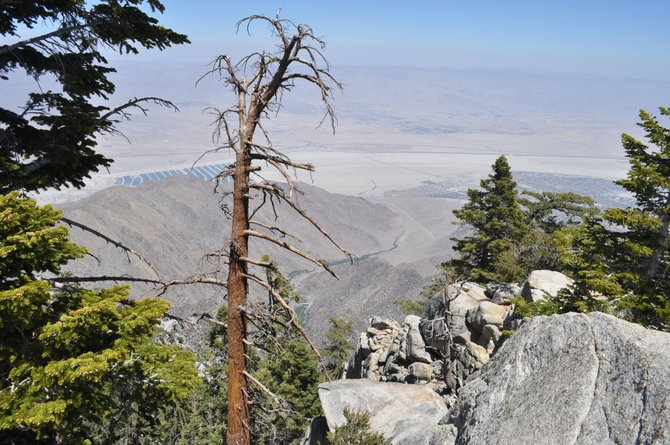 San Jacinto Mountains- overlooking Palm Springs