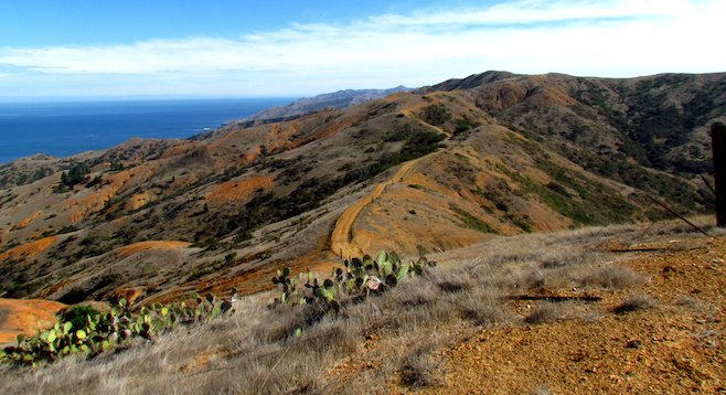 The stark beauty of Catalina Island, from Silver Peak Trail.