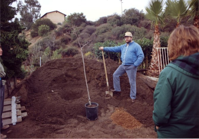 1990 - Bill is giving a tree planting demonstration prior to a community tree planing on Poplar St. in the Azalea Park Neighborhood.