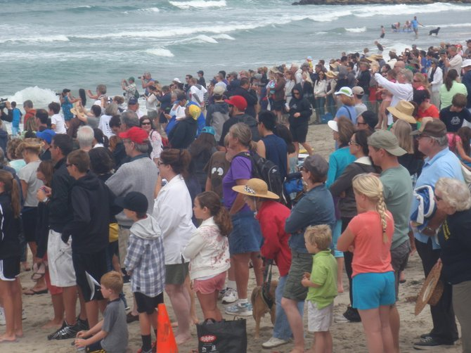 Crowds cheer surf dogs at Loews Coronado Surf Dog comp in IB.