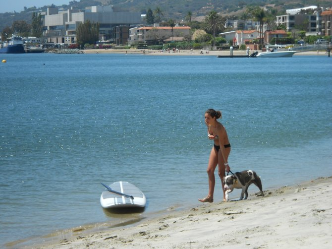 Young girl trying to corral an unruly pit bull along San Diego Bay.