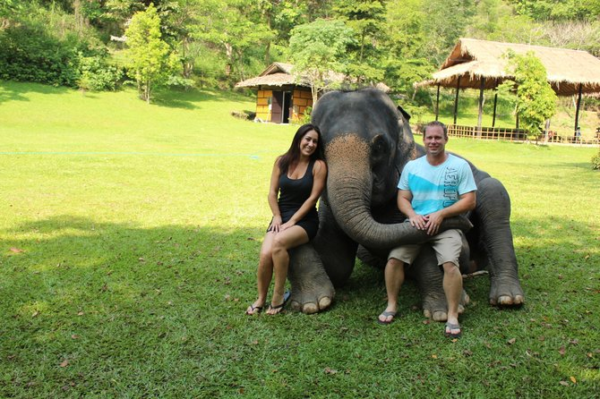 Elephant seats in chang rai thailand