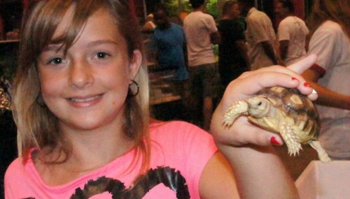 Francesca, 10, shared her tortoise. Photo Bob Weatherston.