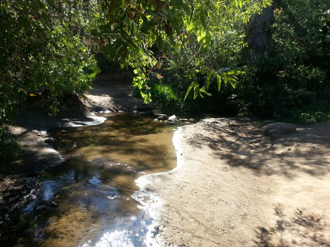 Shady Creek