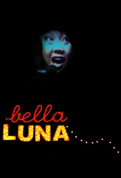 Artist Anne Herlihy's Bella Luna glowing installation art exhibit.