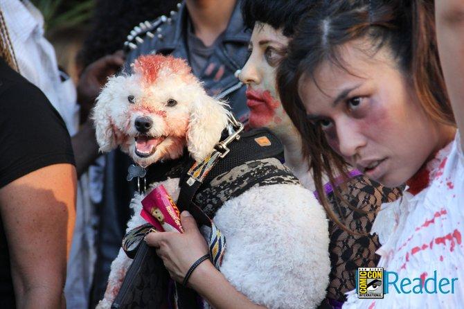 Zombie dog!