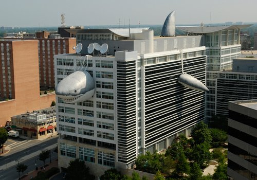 Chompie on the Discovery Channel's Communications' Headquarters in 2010.
