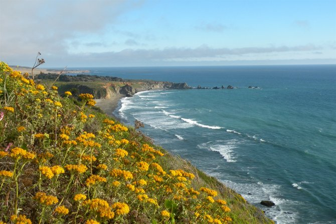 pristine Northern California coast