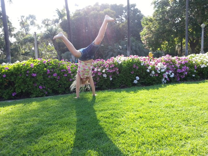 Classical Cartwheel