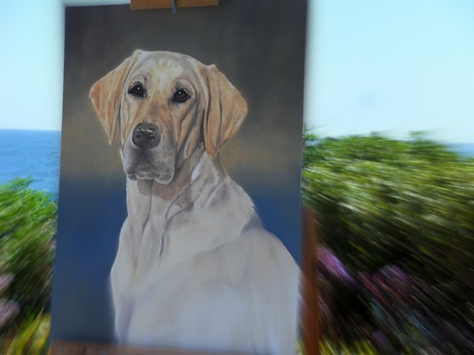 La jolla dog painting