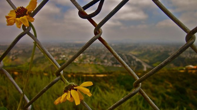 At Mt. Soledad Memorial. Looking east through the chain link fence.