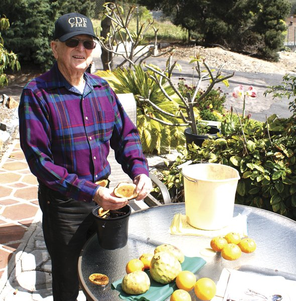 Longtime rare-fruit grower Jack Skeels has everything 