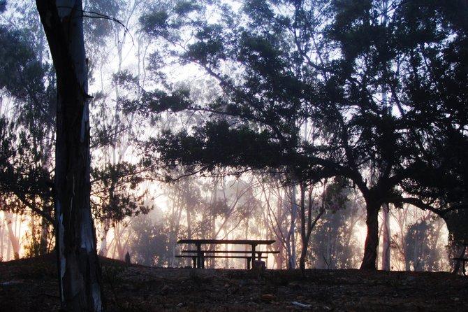 A picnic table at Miramar Lake