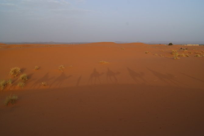 The dunes of Erg Chebbi near Merzouga, Morocco
