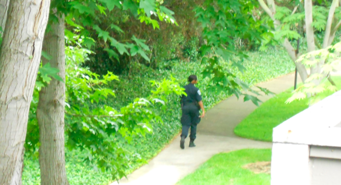 A daytime security guard now roams the property
