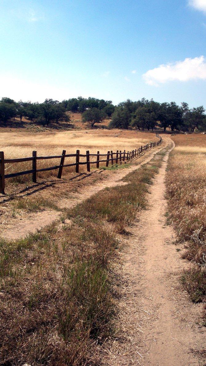 """Longing for the trail"" - Santa Ysabel, CA"