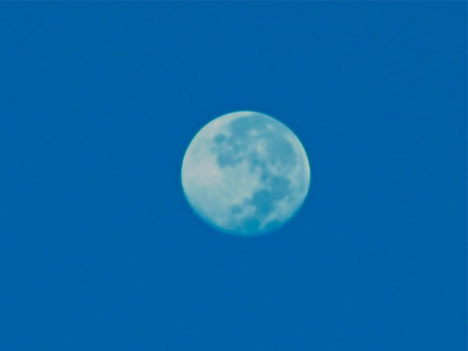 The giant Blue Moon exits North Park's sky on the morning of 9/02/12