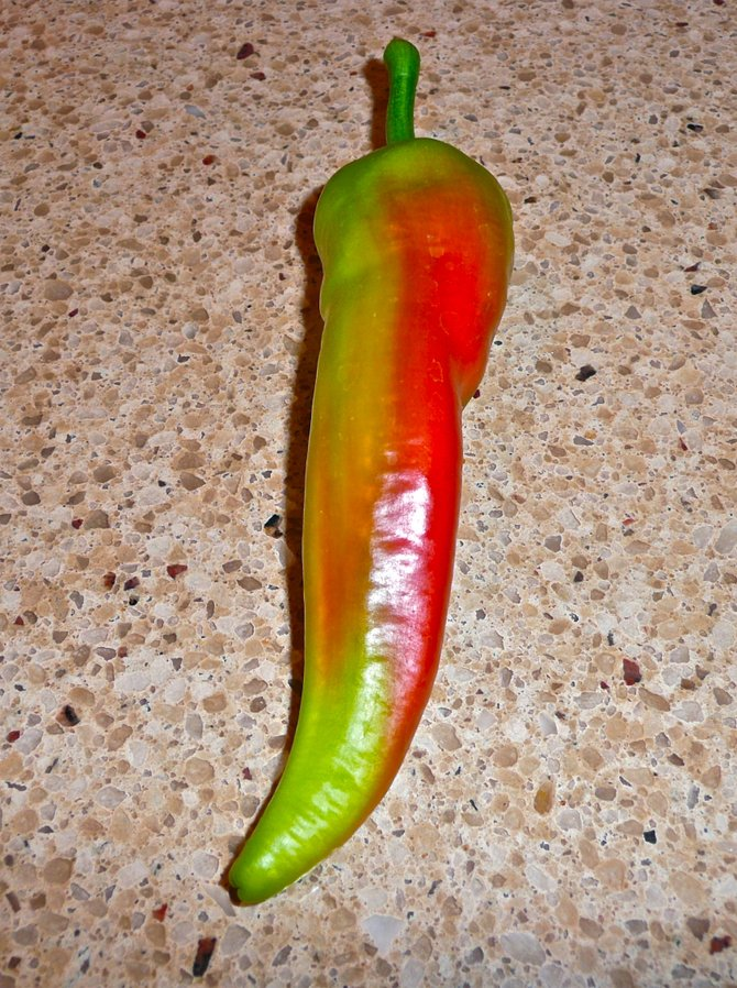 Even the peppers are artistically HOT on Ray Street!