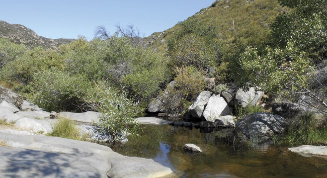 The reward comes at Cibbets Flat, where Kitchen Creek tumbles over granitic rock among the cottonwoods and willows.