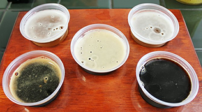 A flight of five tasters including (at bottom, from left-to-right) Molasses Porter, Reckin' Crew dark ale, and Black Rhino.