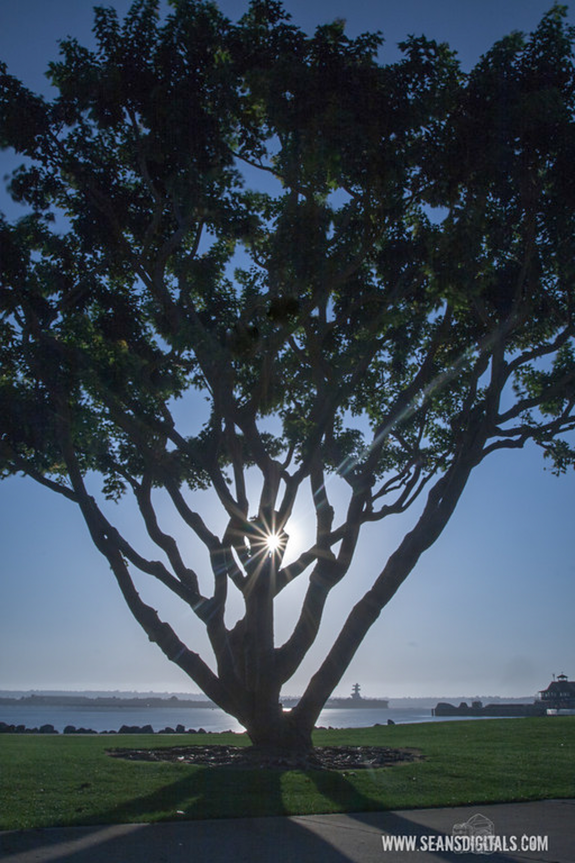 The sun shines through at Seaport Village