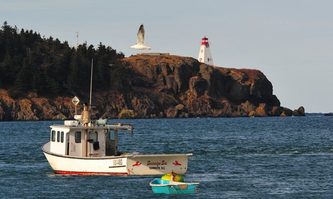 Nova Scotia, Canada - Near Digby, the scallop capitol of the world.   Tides rise and fall 33 feet within the Digby Basin (attached to the Bay of Fundy) every day.   This lobster boat has 200 traps that need to be checked daily (rain or shine).