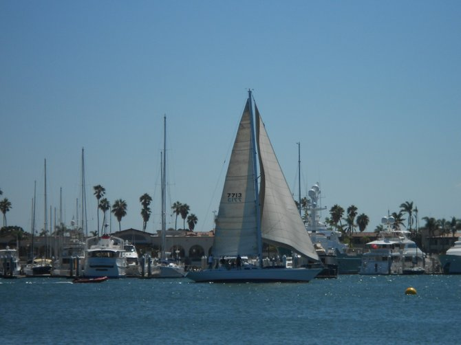 Sailboat along San Diego Bay off Point Loma.