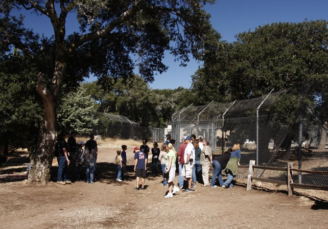 Visitors learn about wolves at the California Wolf Center in Julian