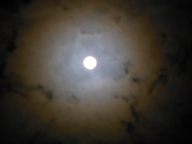 Mysterious Moon (Bonita)