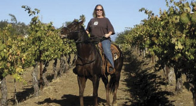 Vineyard riding with Wine Country Trails by Horseback
