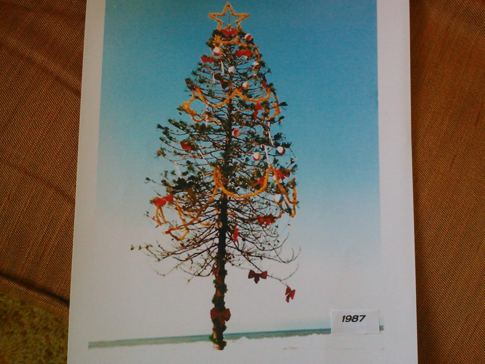 Jean Lewin's photo of O.B.'s Christmas tree in 1987
