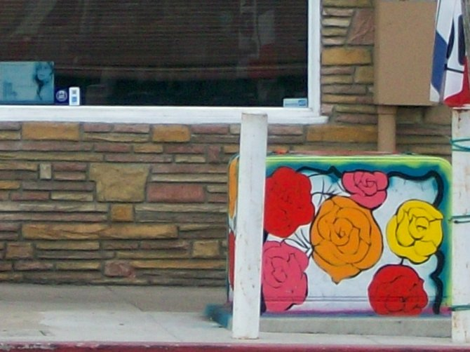 Pretty rose-themed utility box art along Voltaire St. in Ocean Beach.