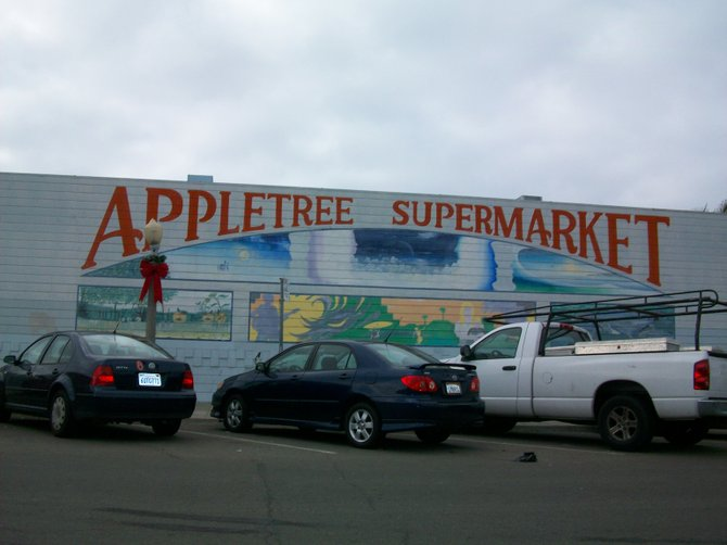 When Apple Tree closes later in the year, I hope they leave this mural behind in Ocean Beach.