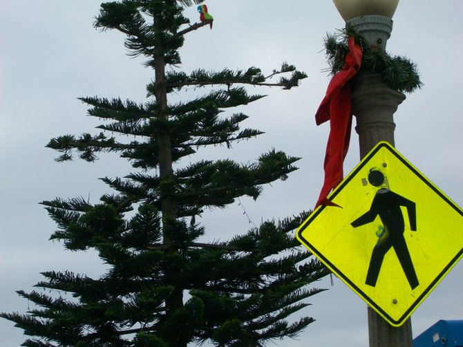 Ocean Beach Christmas tree at foot of Newport Ave.  Also Pedestrian crossing.
