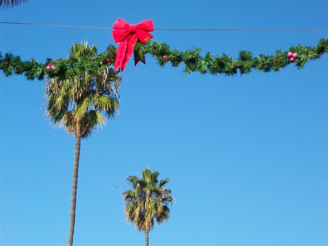 The holiday season amid palm trees along Newport Ave. in Ocean Beach.
