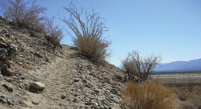 Cahuilla Indians originally used this route as a short cut between Coyote Canyon and settlements in Clark Valley.