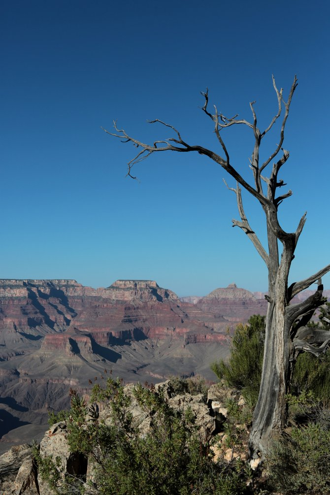 From Mather Point in the Grand Canyon National Park.