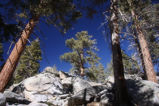 Hiking around Mt. San Jacinto, near Idyllwild