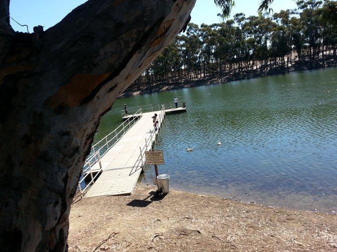 Fishing at Chollas Lake Park