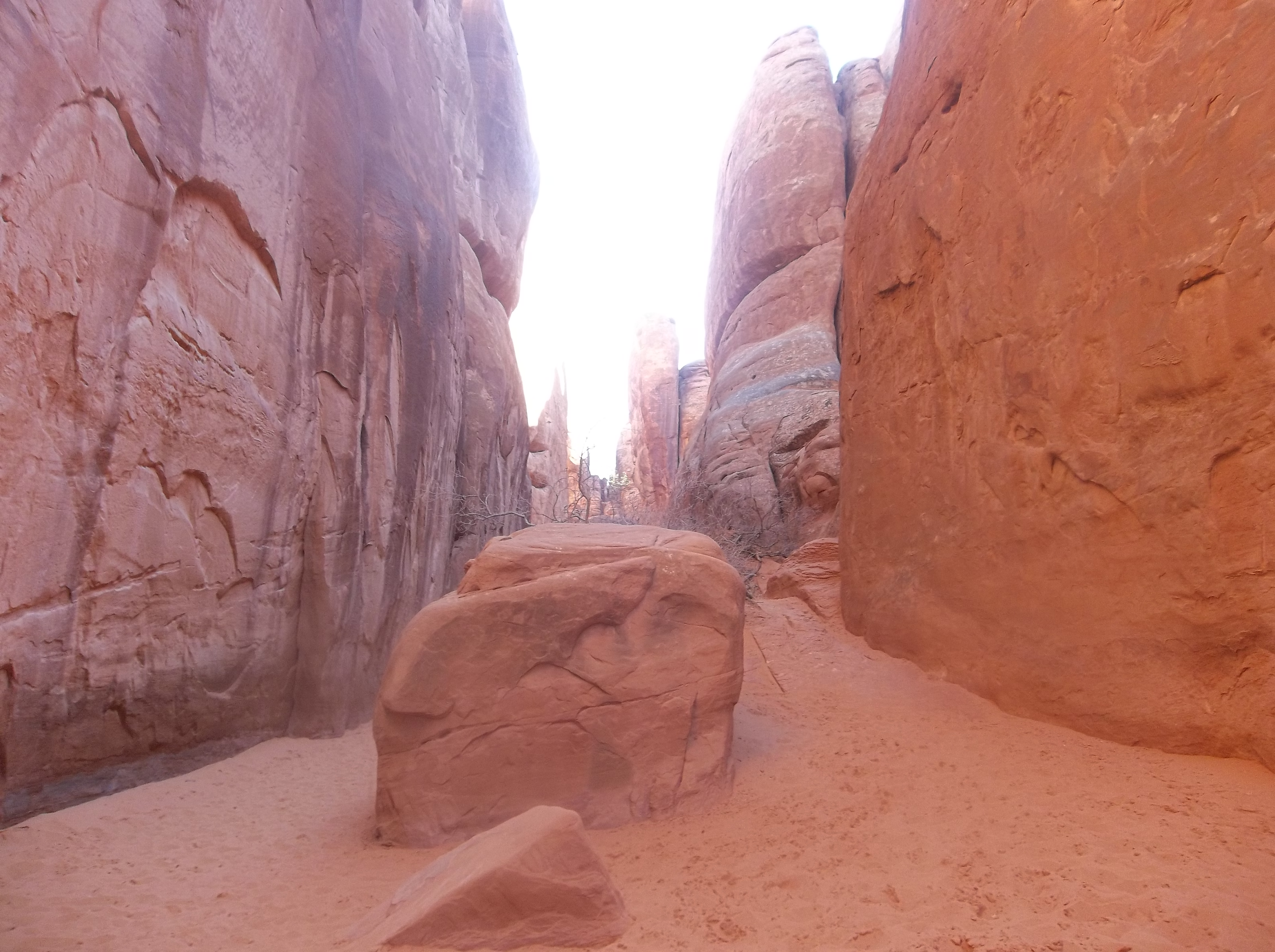 The surface of Mars? No, just a red sandstone canyon in Arches National Park.