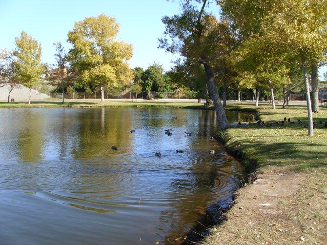 """"""" Santee Lakes on Christmas morning"""""""