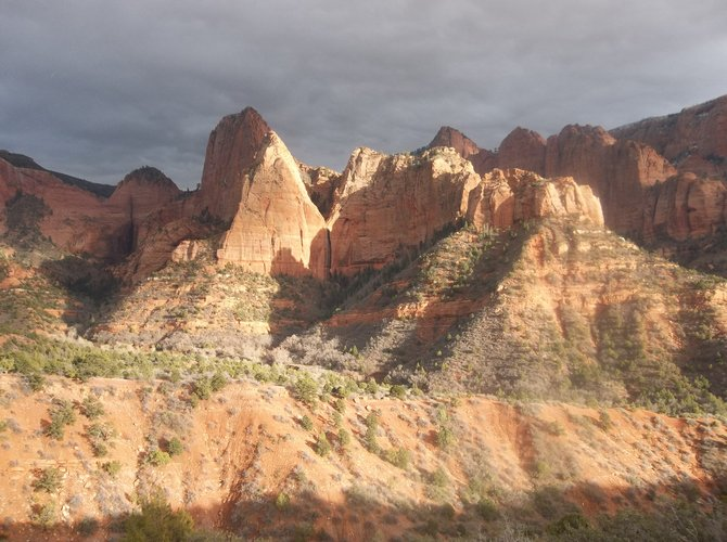 Late afternoon sunlight illuminates the cliffs in Zion National Park