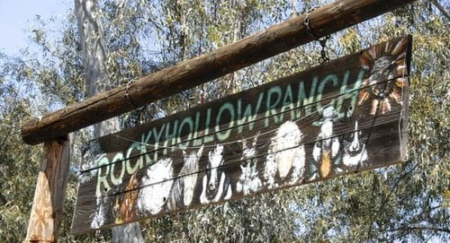 Rocky Hollow Ranch was previously called The Purple Cow & Friends.  Photo Weatherston.