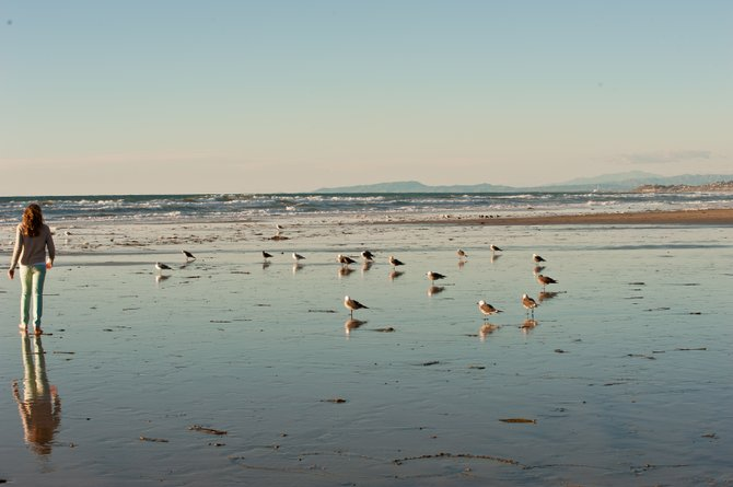 This pictures was taken at Del Mar Beach on January 12, 2013  in the mid after noon.  I took this photo with my NIKon D700 with a 70-200 lense.