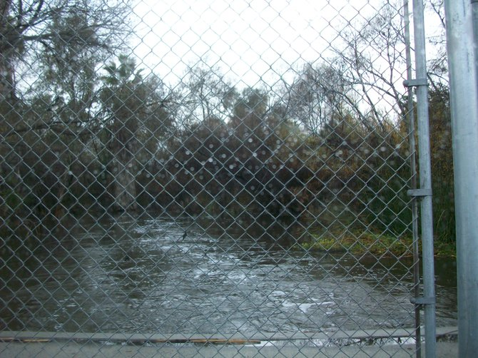 The raging San Diego River as seen crossing Fashion Valley Road after a rainstorm.